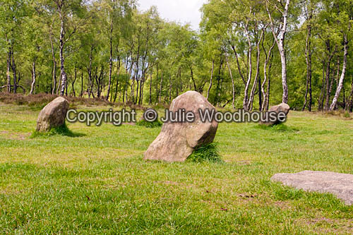 photo showing Nine Ladies Stone Circle, Stanton Moor, Derbyshire, England