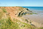 Thumbnail image of Filey Brigg, North Yorkshire