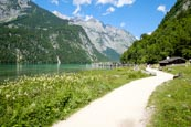Footpath Leading To The Salet Landing Stage On The Königssee Lake, Upper Bavaria, Bavaria, Germany,